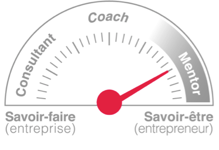 Difference entre mentorat-coach-consultant
